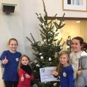 4. Platz für unseren Weihnachtsbaum